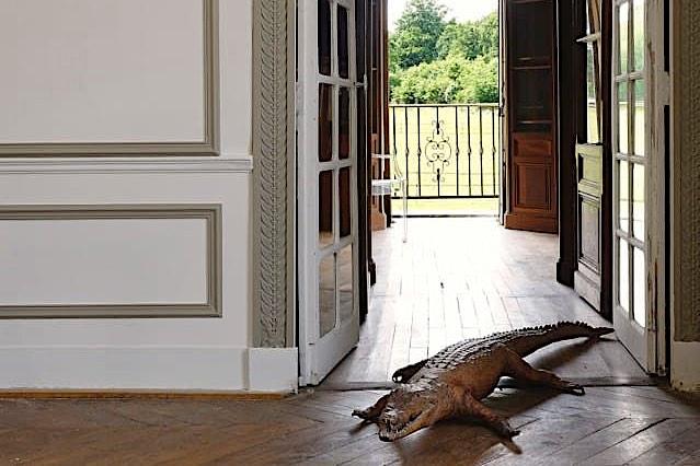 Château de Vaugrigneuse - Cabinet de curiosité - Le Grand Salon de réception